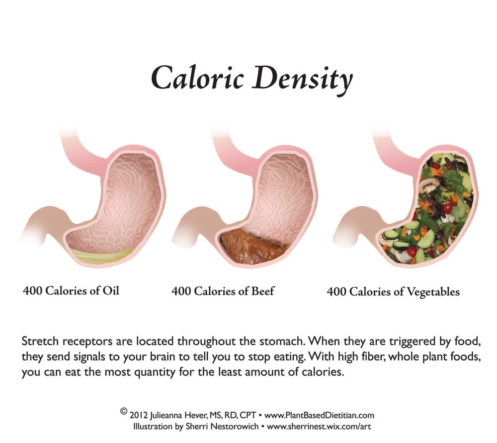 stomach-chart-caloric volume foods